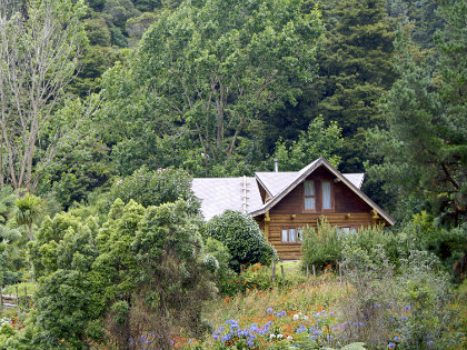cabininwoods_420x315